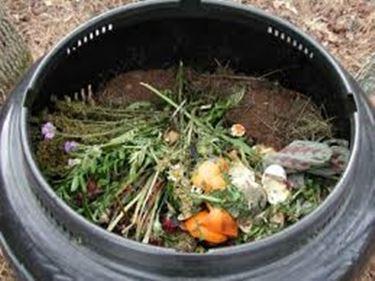 compostiera-4
