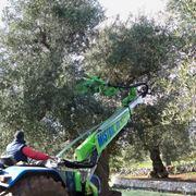 scuotitori per olive-8