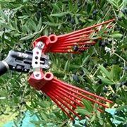 scuotitori per olive-9