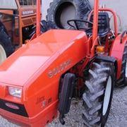 trattorini-3