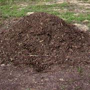 Come si effettua il compostaggio?