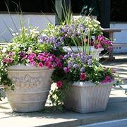 fioriere da balcone-8