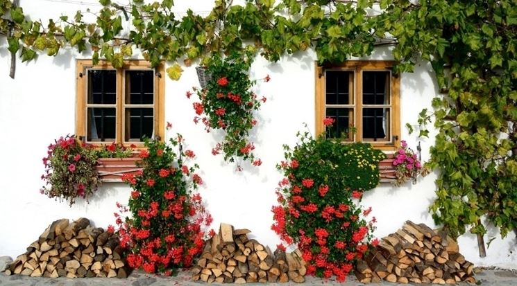 fioriere giardino-5