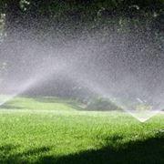 Annaffiature e Irrigazione Areca