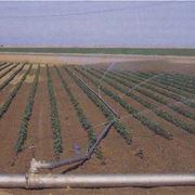 Come costruire un impianto interrato per l'irrigazione