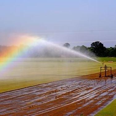Irrigazione e innaffiatura