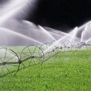 Risposta : Giardino Irrigazione automatica