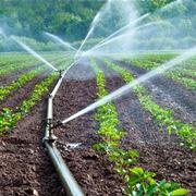 tubi irrigazione fuoriterra
