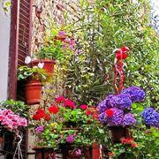 vasi per fiori-1