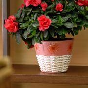 vasi per fiori-6