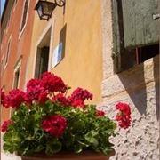 vasi per fiori-7