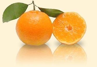Mandarino-7