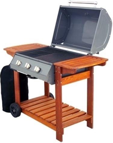 barbecue a gas-7