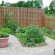 10 Marzo Coltivare l'orto in casa