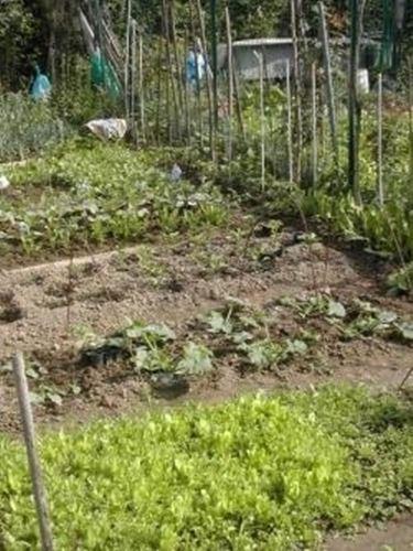 il clima per fare un orto