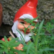 nani da giardino-1