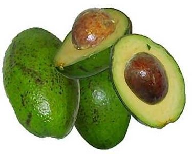 Risposta: avocado