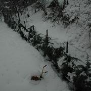 lavori nel orto dicembre-6