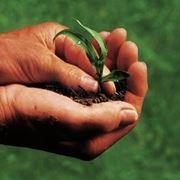 Aziende agricoltura biologica