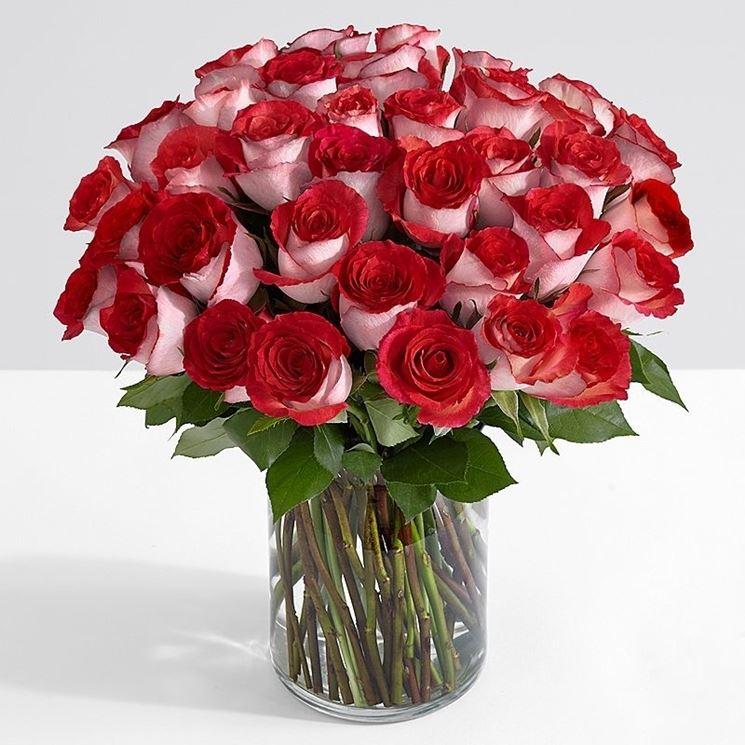Mazzo Di Fiori A Gambo Lungo.Bouquet Di Rose A Gambo Lungo Regalare Piante Bouquet Di Rose