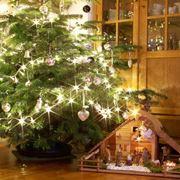 Albero Natale e presepe