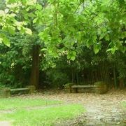 Complementi d'arredo giardini all'inglese-2
