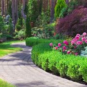 Filosofia giardini all'inglese-4