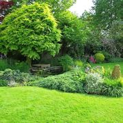 Filosofia giardini all'inglese-8