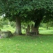 Filosofia giardini all'inglese