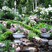 Progettazione giardini all'inglese-5