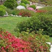 Progettazione giardini all'inglese-9