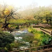 Filosofia giardini Zen-1
