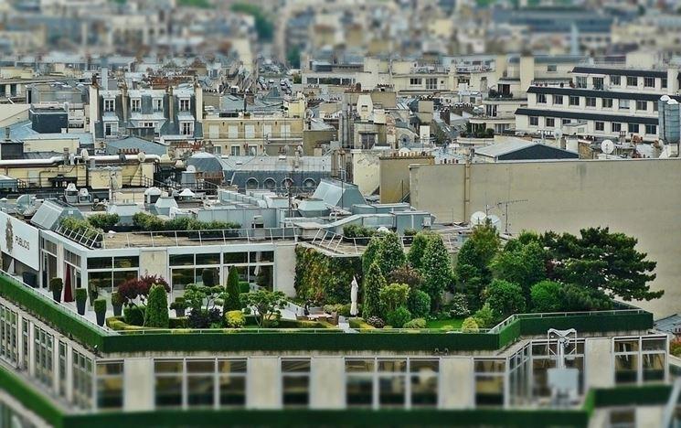 Progettare Il Giardino Da Soli : Progettare giardini zen da solo giardino zen progettazione